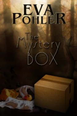 The-Mystery-Box
